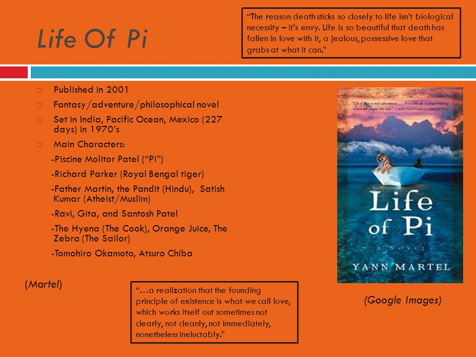 The Journey Independent Study Project Life Of Pi Native Son And