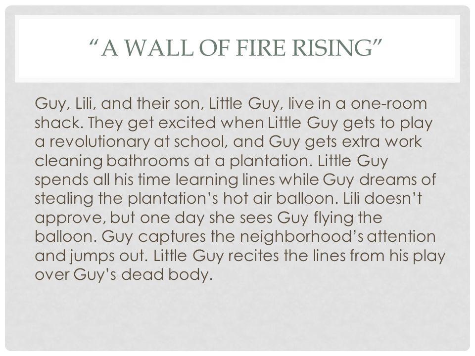 edwidge danticat a wall of fire rising