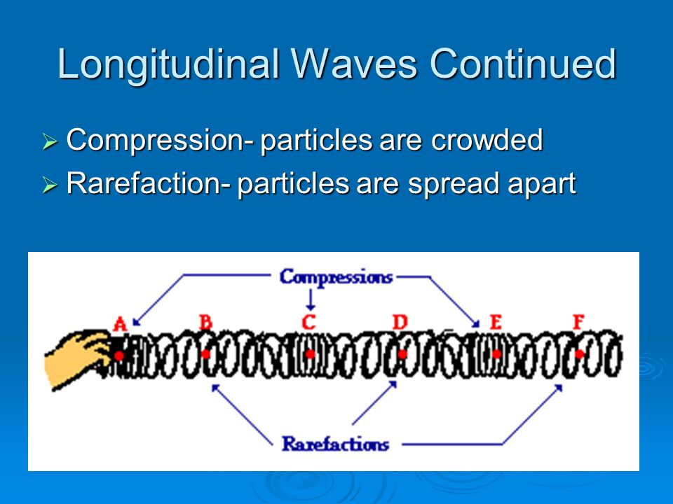 Longitudinal Waves Continued  Compression- particles are crowded  Rarefaction- particles are spread apart