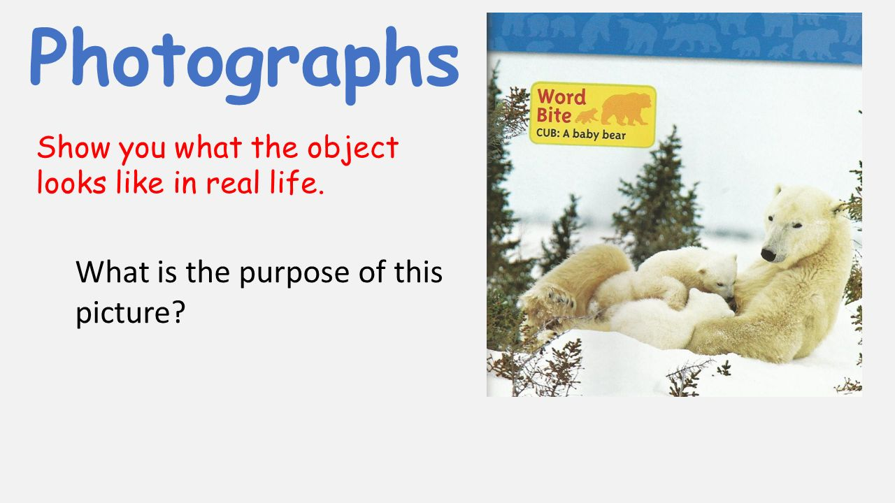 Photographs Show you what the object looks like in real life. What is the purpose of this picture