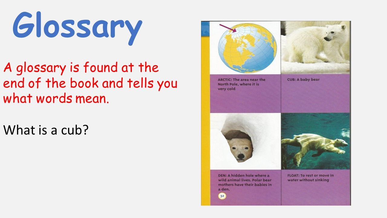Glossary A glossary is found at the end of the book and tells you what words mean. What is a cub