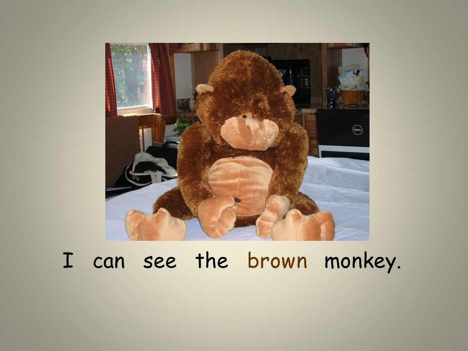 I can see the brown monkey.