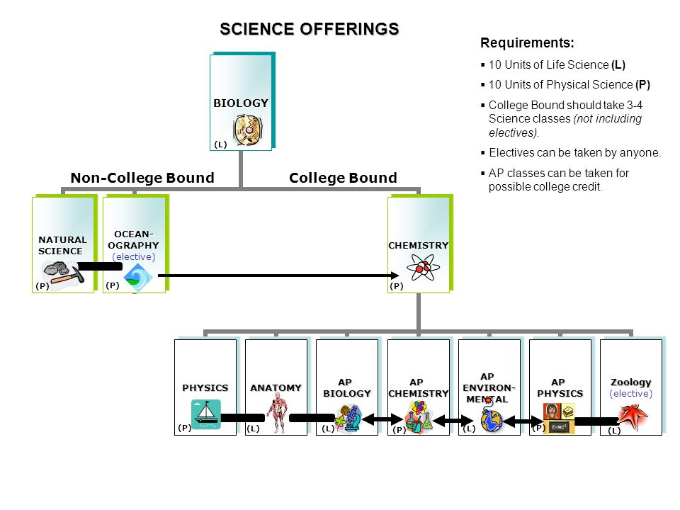Science Selection 10 th and 11 th grade  High School