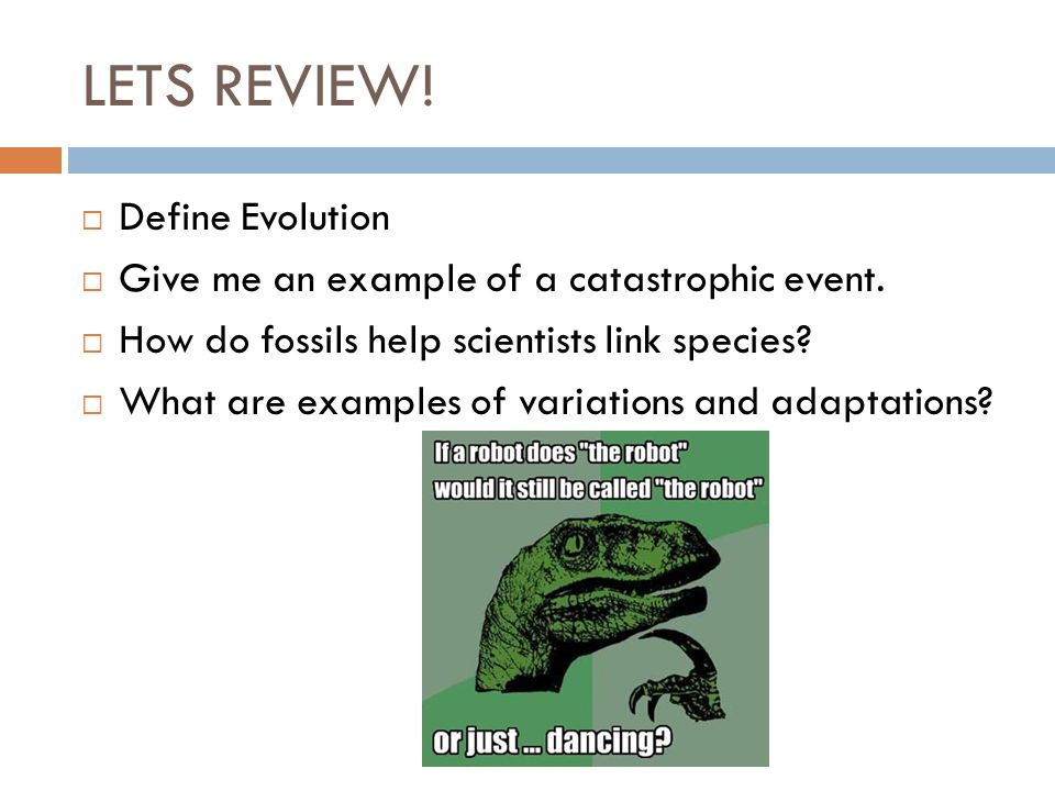 Overview  Insights to Darwin's Theory  Natural Selection & its principles  4 Means of Evolutionary Evidence