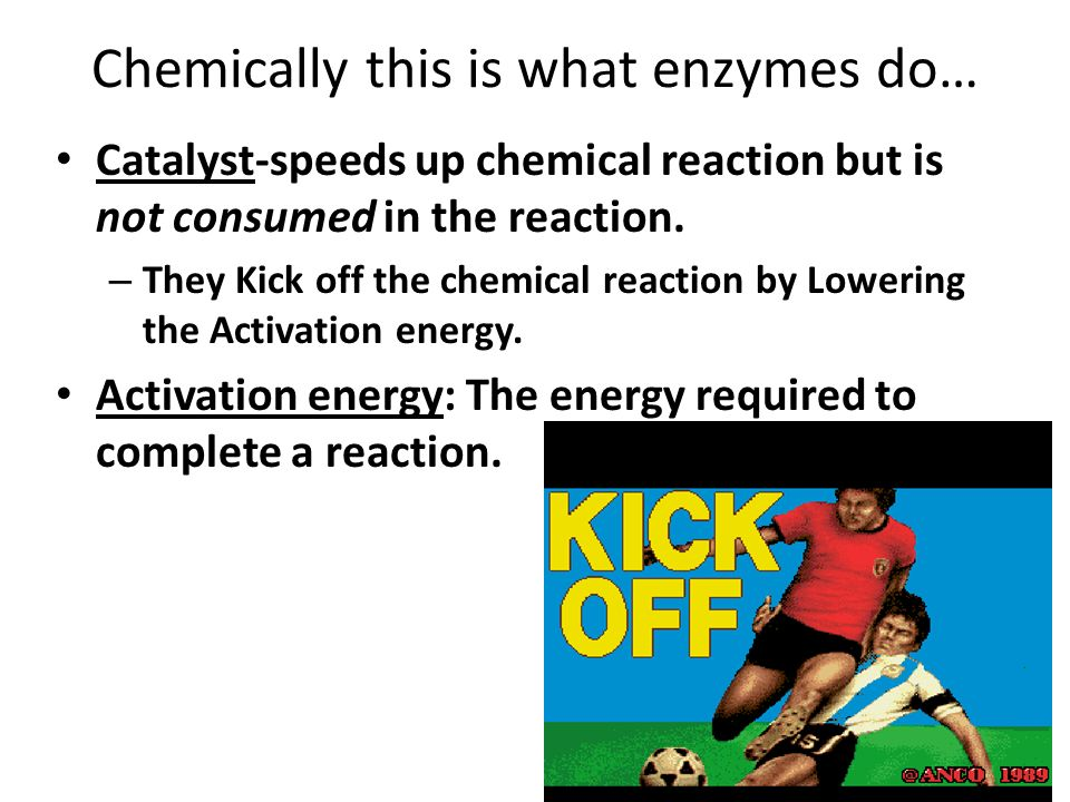 Chemically this is what enzymes do… Catalyst-speeds up chemical reaction but is not consumed in the reaction.