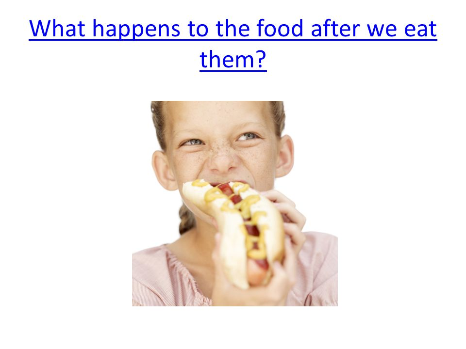 What happens to the food after we eat them