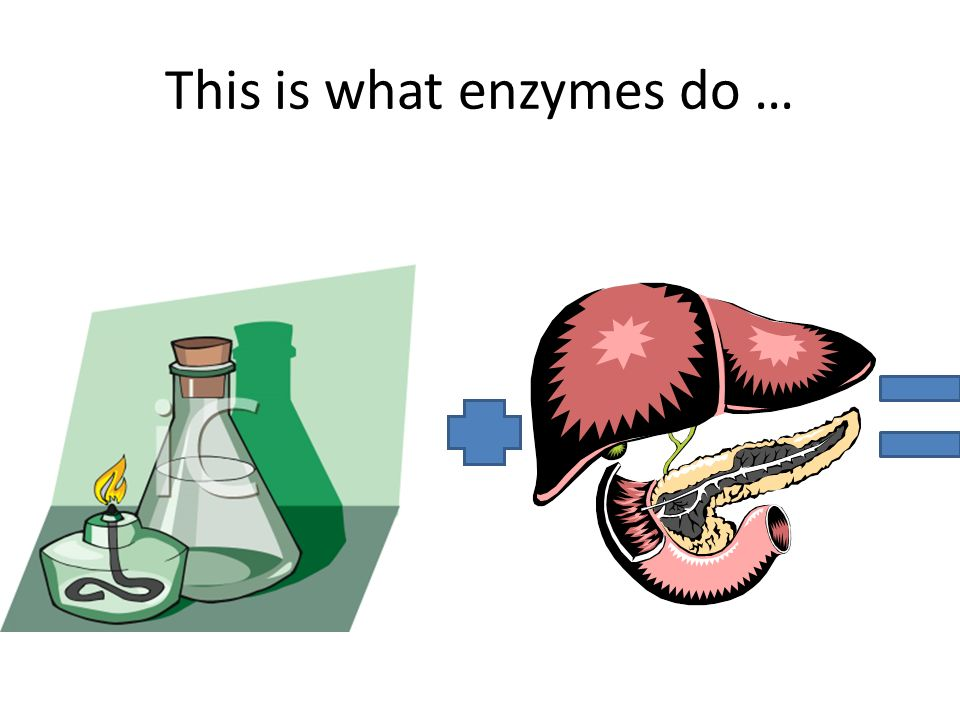 This is what enzymes do …