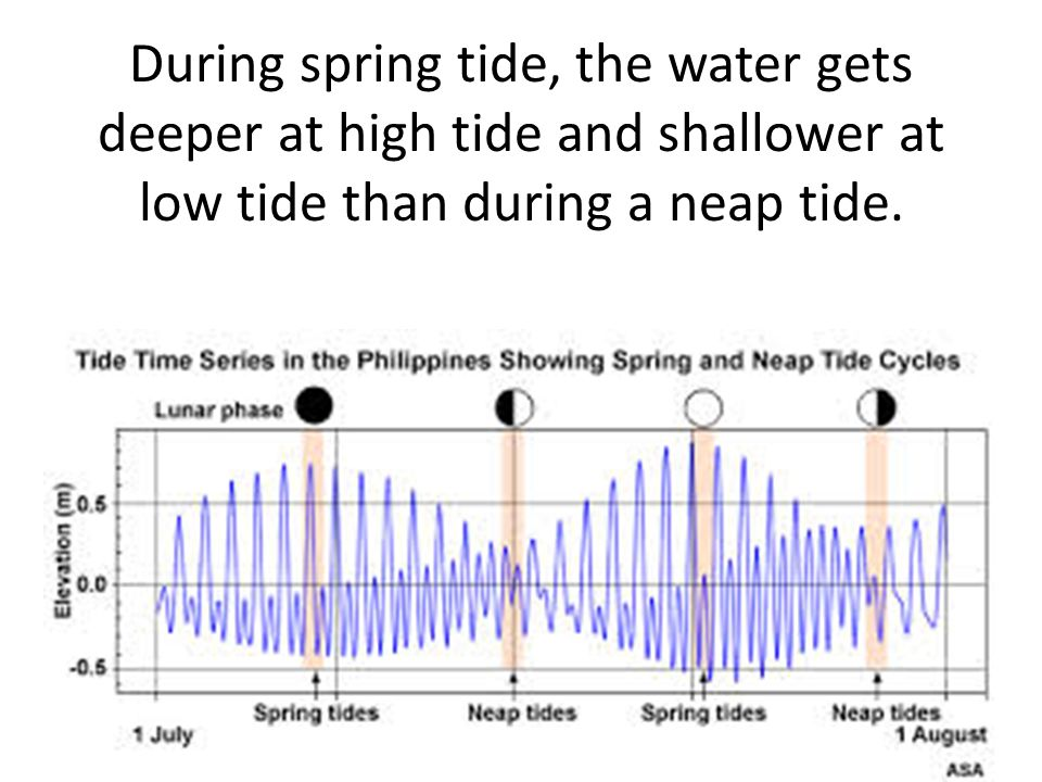 During spring tide, the water gets deeper at high tide and shallower at low tide than during a neap tide.
