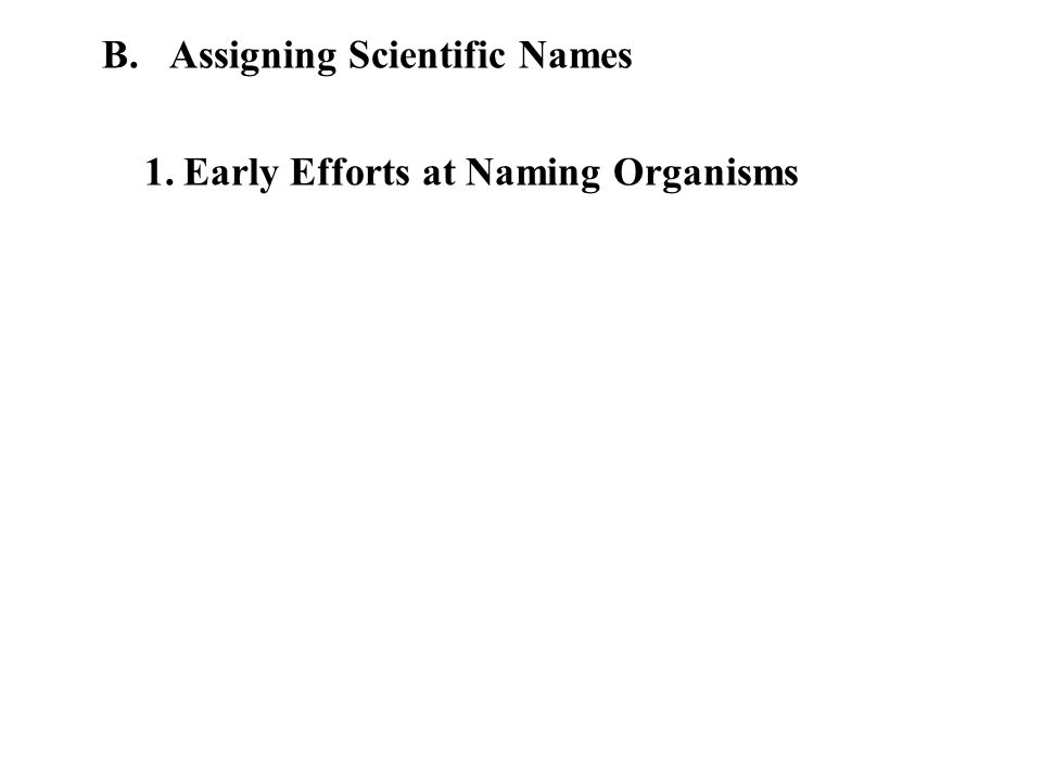 B. Assigning Scientific Names 1.Early Efforts at Naming Organisms