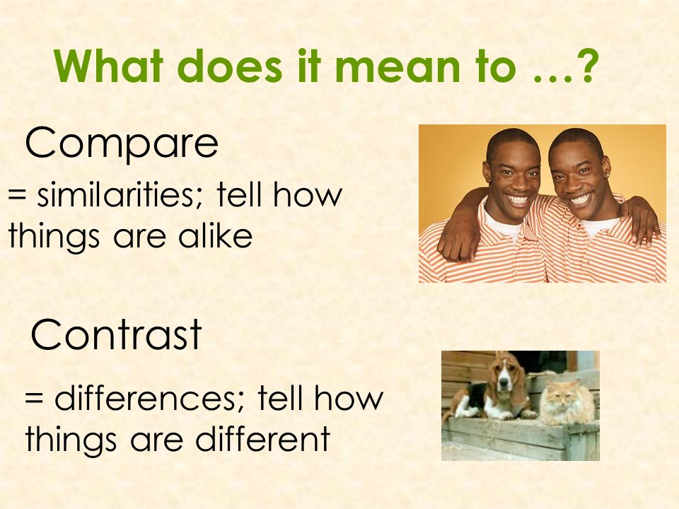 what does compare and contrast mean in an essay