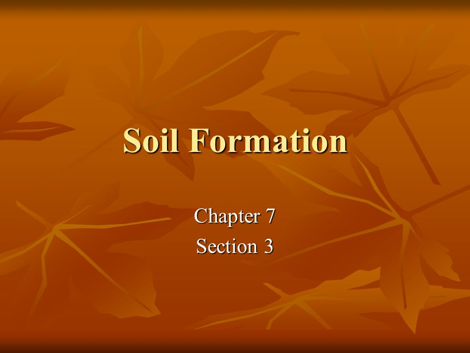 Soil Formation Chapter 7 Section 3
