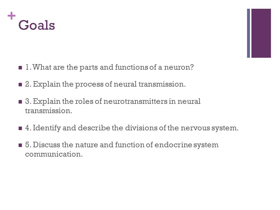 + Goals 1. What are the parts and functions of a neuron.