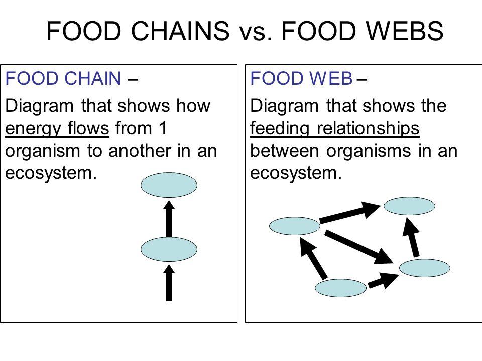 Food Chains Food Webs Food Chains Vs Food Webs Food Chain