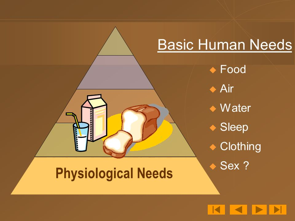 Physiological Needs  Food  Air  Water  Sleep  Clothing  Sex Basic Human Needs