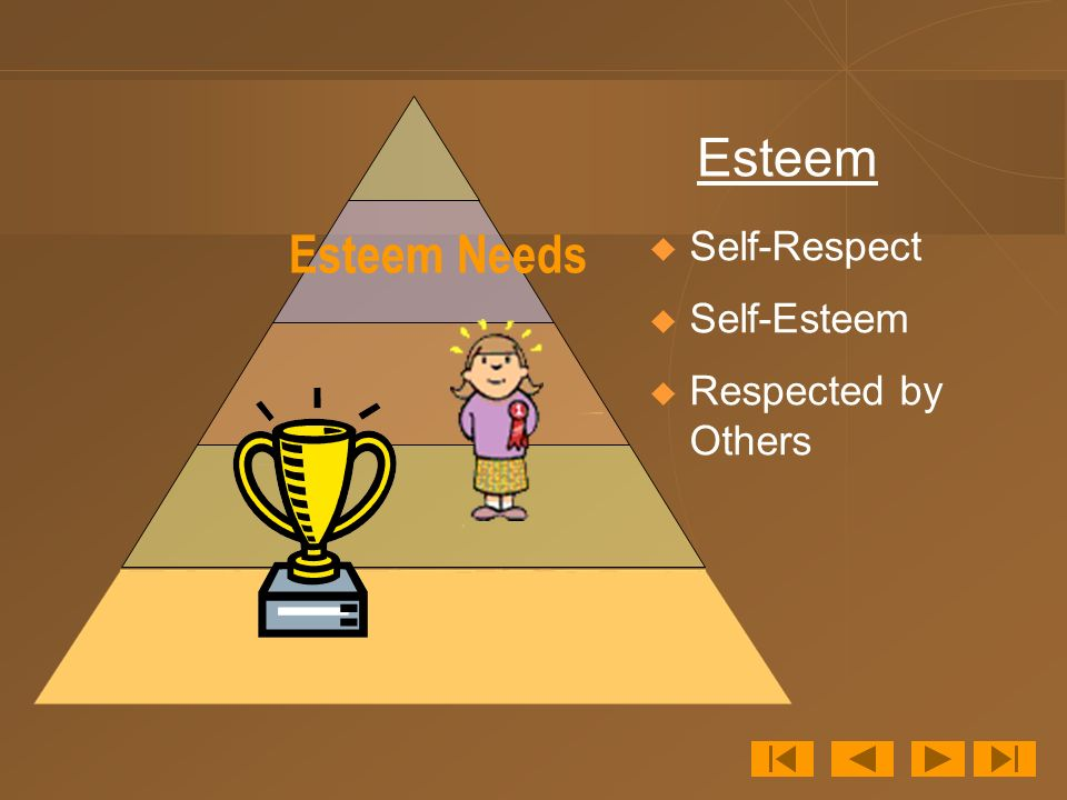 Esteem Needs  Self-Respect  Self-Esteem  Respected by Others Esteem