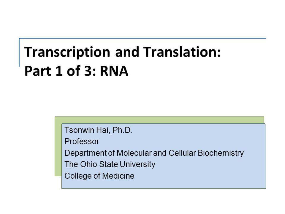 homework #3 rna and transcription