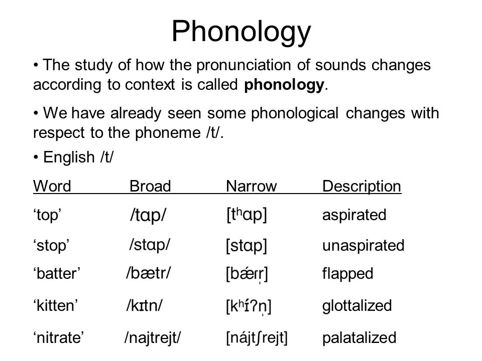 Phonology February 28, 2012 Housekeeping To begin with    Phonetics