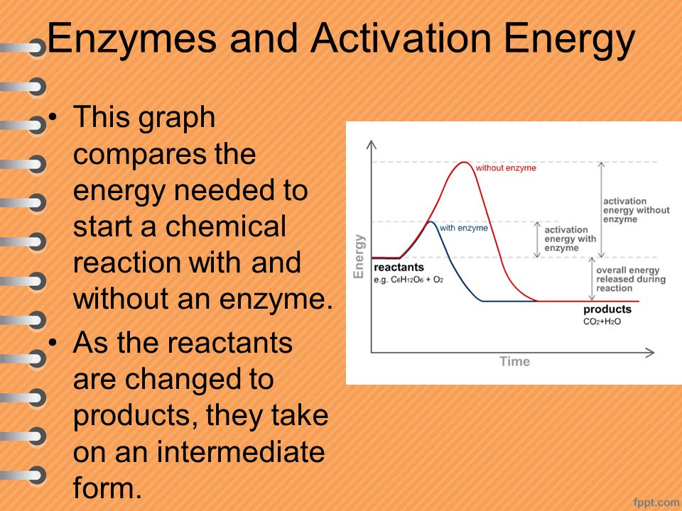 Enzymes and Activation Energy This graph compares the energy needed to start a chemical reaction with and without an enzyme.