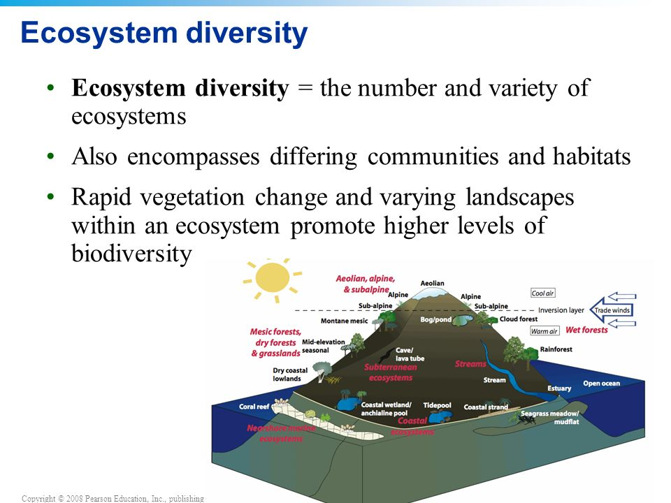 Ecosystem diversity Ecosystem diversity = the number and variety of ecosystems Also encompasses differing communities and habitats Rapid vegetation change and varying landscapes within an ecosystem promote higher levels of biodiversity