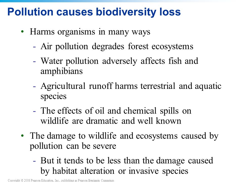 Copyright © 2008 Pearson Education, Inc., publishing as Pearson Benjamin Cummings Pollution causes biodiversity loss Harms organisms in many ways -Air pollution degrades forest ecosystems -Water pollution adversely affects fish and amphibians -Agricultural runoff harms terrestrial and aquatic species -The effects of oil and chemical spills on wildlife are dramatic and well known The damage to wildlife and ecosystems caused by pollution can be severe -But it tends to be less than the damage caused by habitat alteration or invasive species