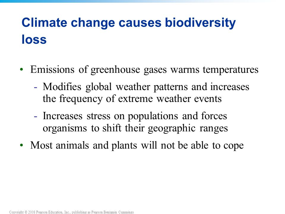 Copyright © 2008 Pearson Education, Inc., publishing as Pearson Benjamin Cummings Climate change causes biodiversity loss Emissions of greenhouse gases warms temperatures -Modifies global weather patterns and increases the frequency of extreme weather events -Increases stress on populations and forces organisms to shift their geographic ranges Most animals and plants will not be able to cope
