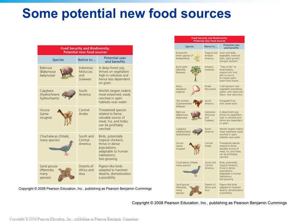 Copyright © 2008 Pearson Education, Inc., publishing as Pearson Benjamin Cummings Some potential new food sources