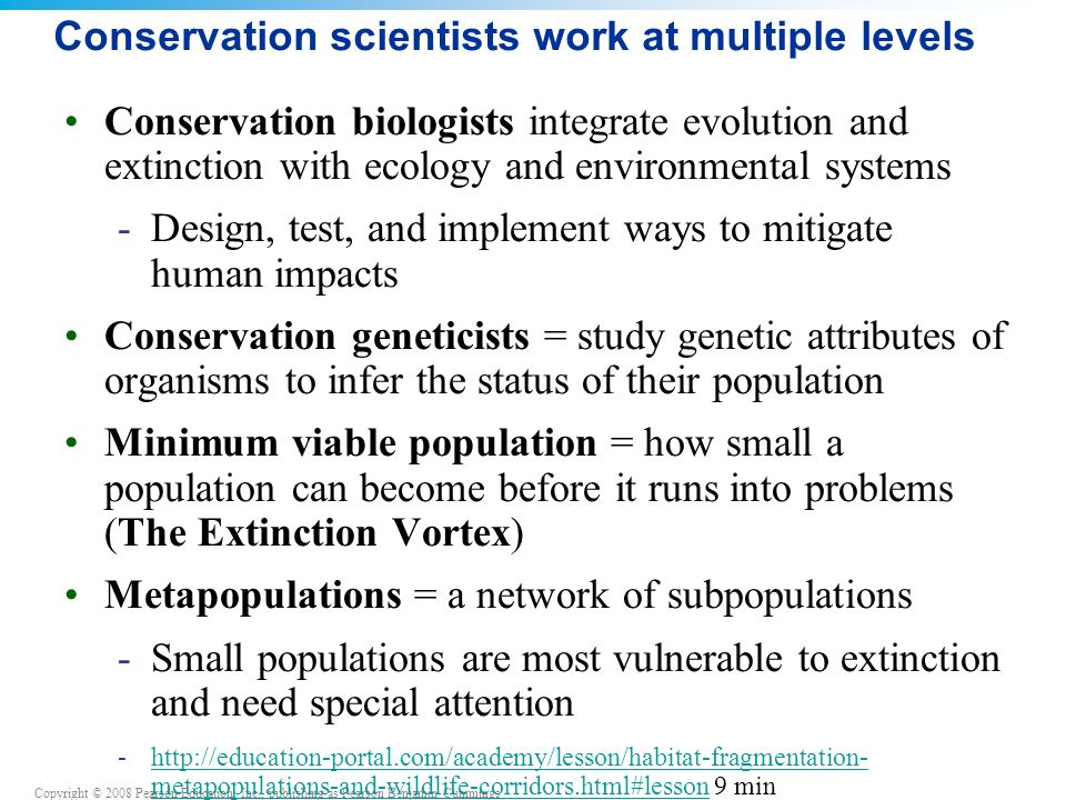 Copyright © 2008 Pearson Education, Inc., publishing as Pearson Benjamin Cummings Conservation scientists work at multiple levels Conservation biologists integrate evolution and extinction with ecology and environmental systems -Design, test, and implement ways to mitigate human impacts Conservation geneticists = study genetic attributes of organisms to infer the status of their population Minimum viable population = how small a population can become before it runs into problems (The Extinction Vortex) Metapopulations = a network of subpopulations -Small populations are most vulnerable to extinction and need special attention -http://education-portal.com/academy/lesson/habitat-fragmentation- metapopulations-and-wildlife-corridors.html#lesson 9 minhttp://education-portal.com/academy/lesson/habitat-fragmentation- metapopulations-and-wildlife-corridors.html#lesson
