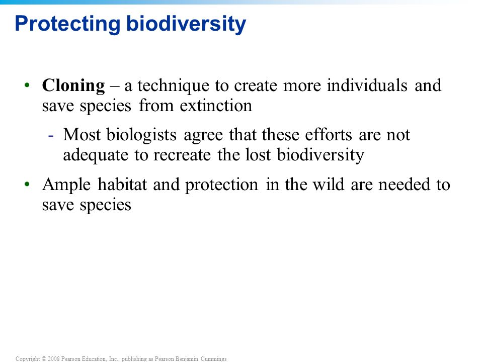Copyright © 2008 Pearson Education, Inc., publishing as Pearson Benjamin Cummings Protecting biodiversity Cloning – a technique to create more individuals and save species from extinction -Most biologists agree that these efforts are not adequate to recreate the lost biodiversity Ample habitat and protection in the wild are needed to save species