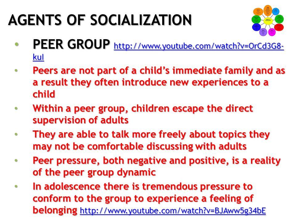 agent of socialisation definition