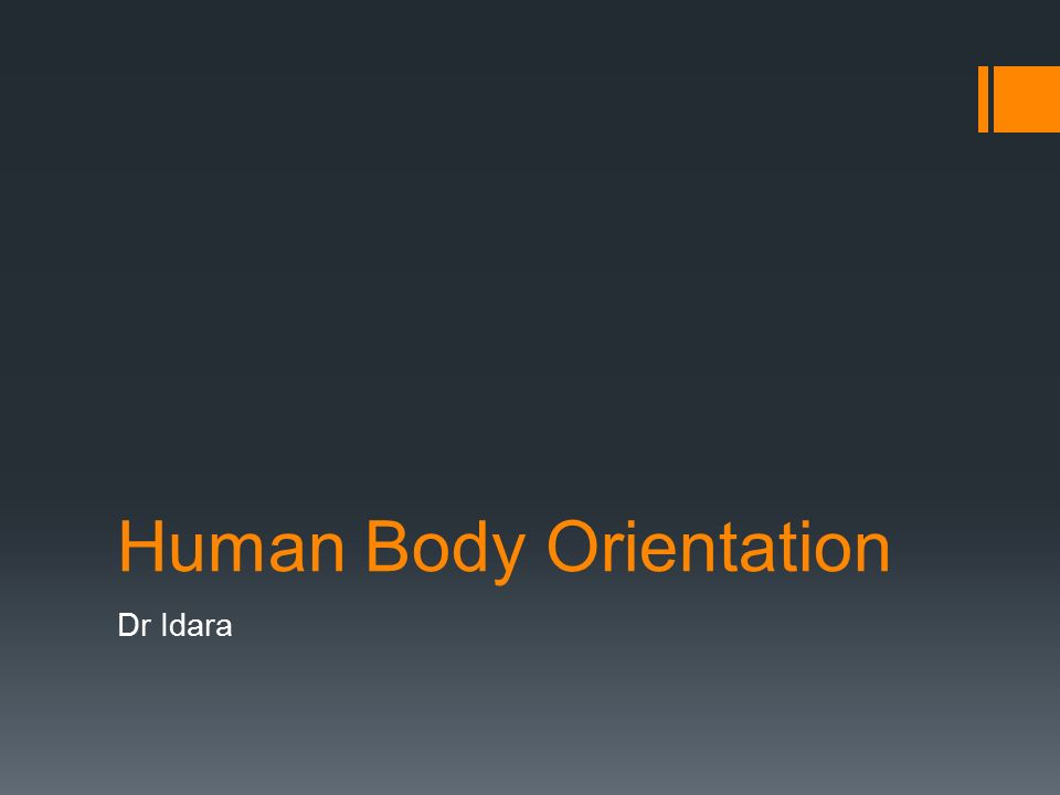 1 human body orientation dr idara