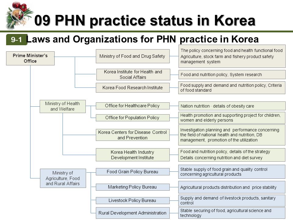 Definition of PHN History of PHN PHN and Health Promotion Importance