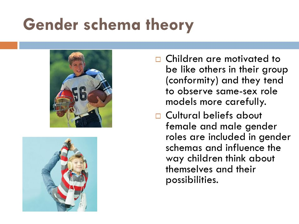 gender schema theory examples