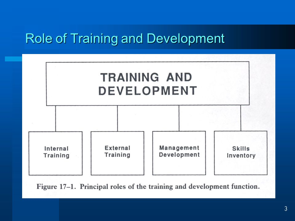 training and development module course construction information ...
