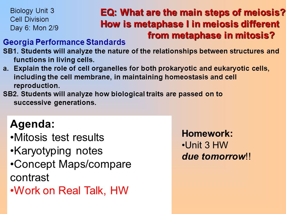 Complete The Concept Map Comparing Mitosis And Meiosis Answers.Biology Unit 3 Cell Division Day 1 Monday Feb 2 Homework Read Ch