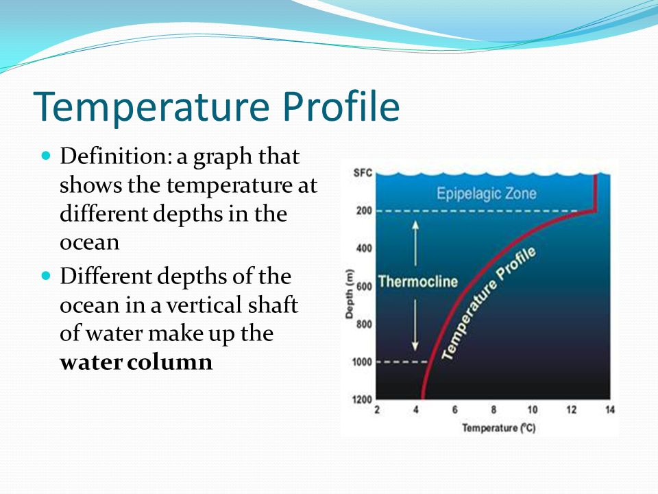 the importance of density salinity and temperature in the study of oceanography Oceanography: oceanography, scientific discipline concerned with all aspects of the world's oceans and seas marine ecology, also called biological oceanography, involves the study of the plants and animals of the sea, including life cycles and food production salinity-temperature-depth system.