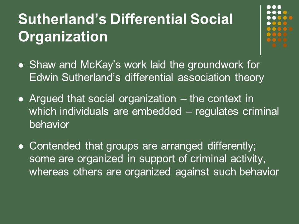 differential social organization theory