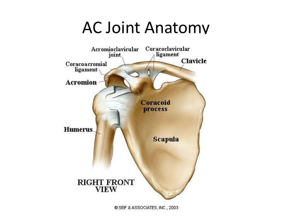 Ac Joint Injury By Eric Hunter Causes Of Ac Joint Injury Athletes