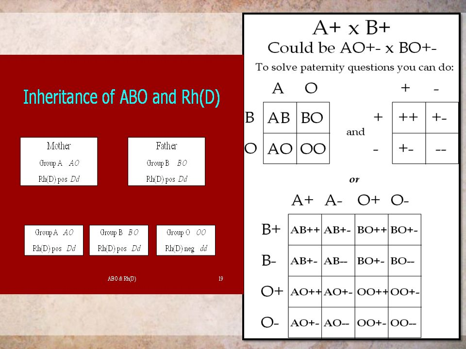 Blood Group Is A Classification Of Based On The Presence Or