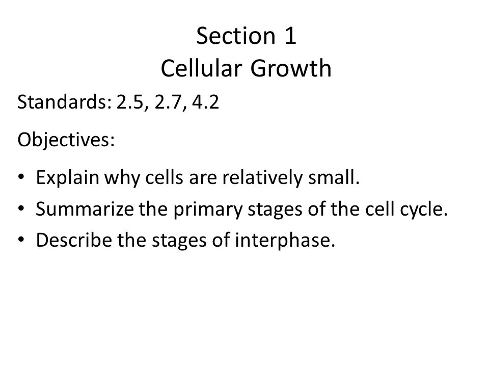 9.1 Vocabulary Cell Cycle Interphase Mitosis Cytokinesis Chromosome Chromatin