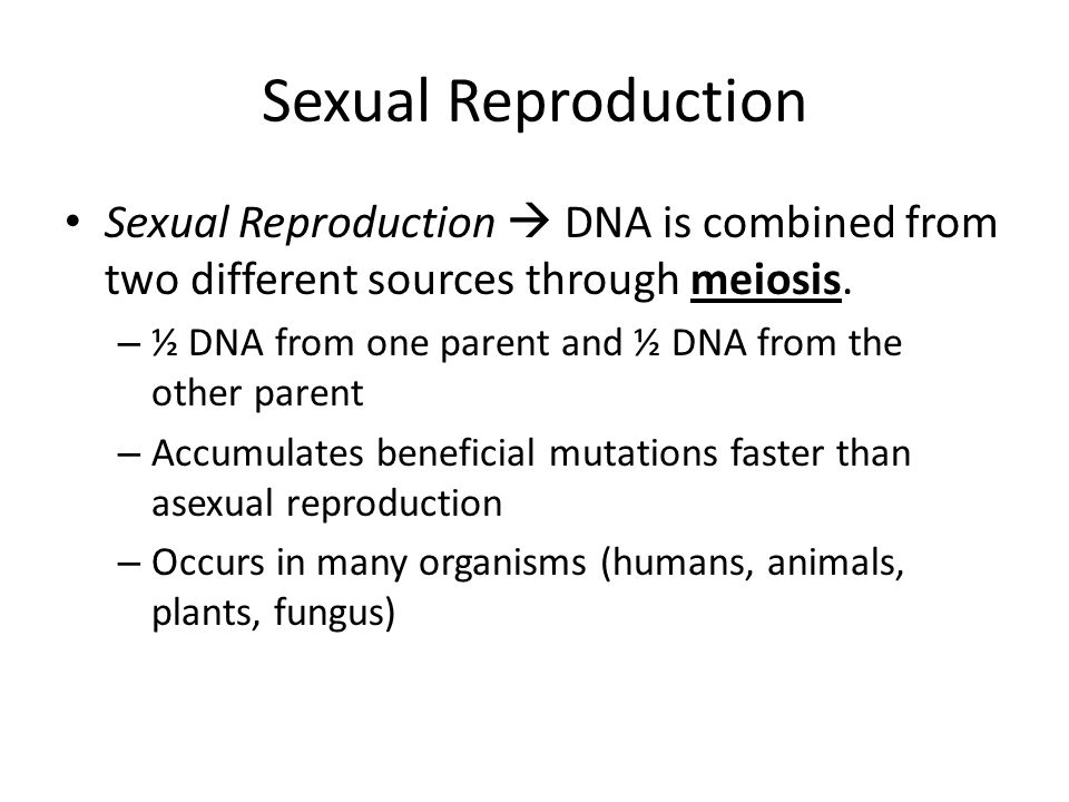 Asexual Reproduction Asexual Reproduction  organisms makes a complete copy of itself through mitosis.