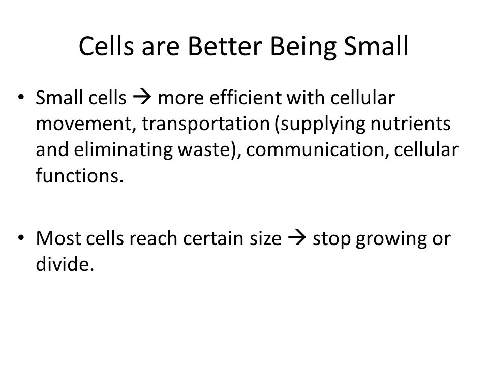 Cell Size Limitations Limiting factor of size: surface area volume As cell grows  ratio of SA to volume decreases