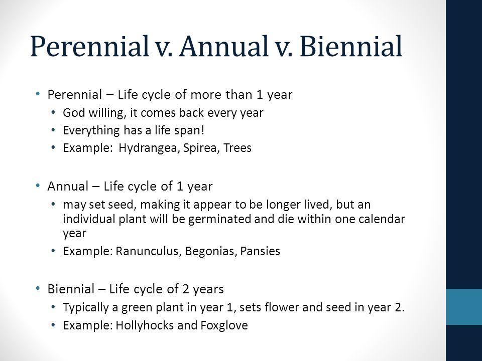 3 Perennial V Annual Biennial