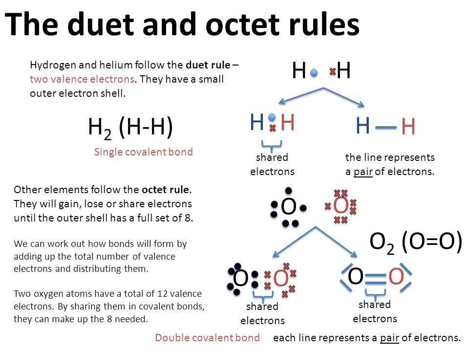 octet rule youtube - 638×479