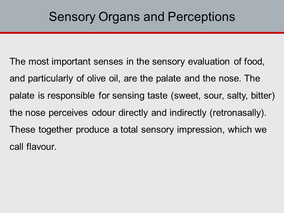 Sensory Organs and Perceptions The most important senses in the sensory evaluation of food, and particularly of olive oil, are the palate and the nose.