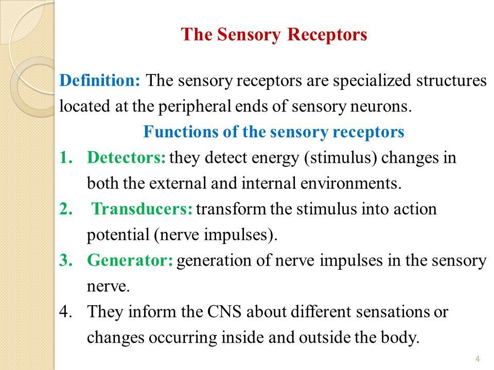 Lecture 1 Sensory Receptors And Somatic Sensation 1 Dr Eyad M