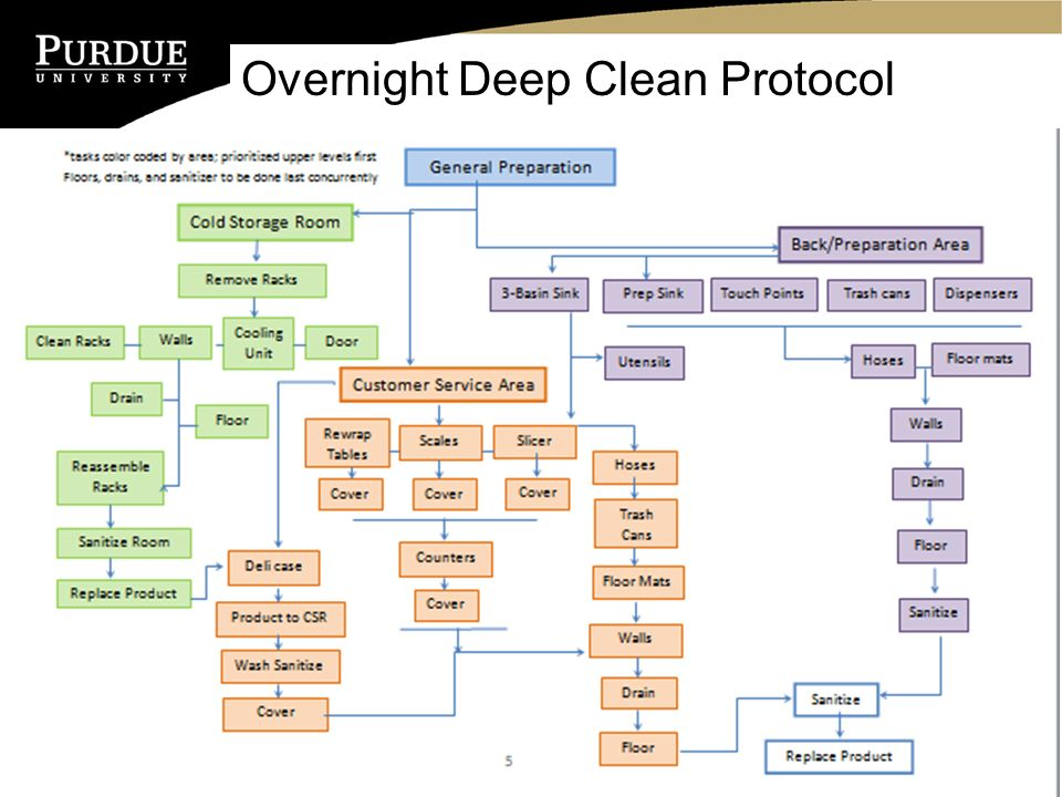 10 Overnight Deep Clean Protocol
