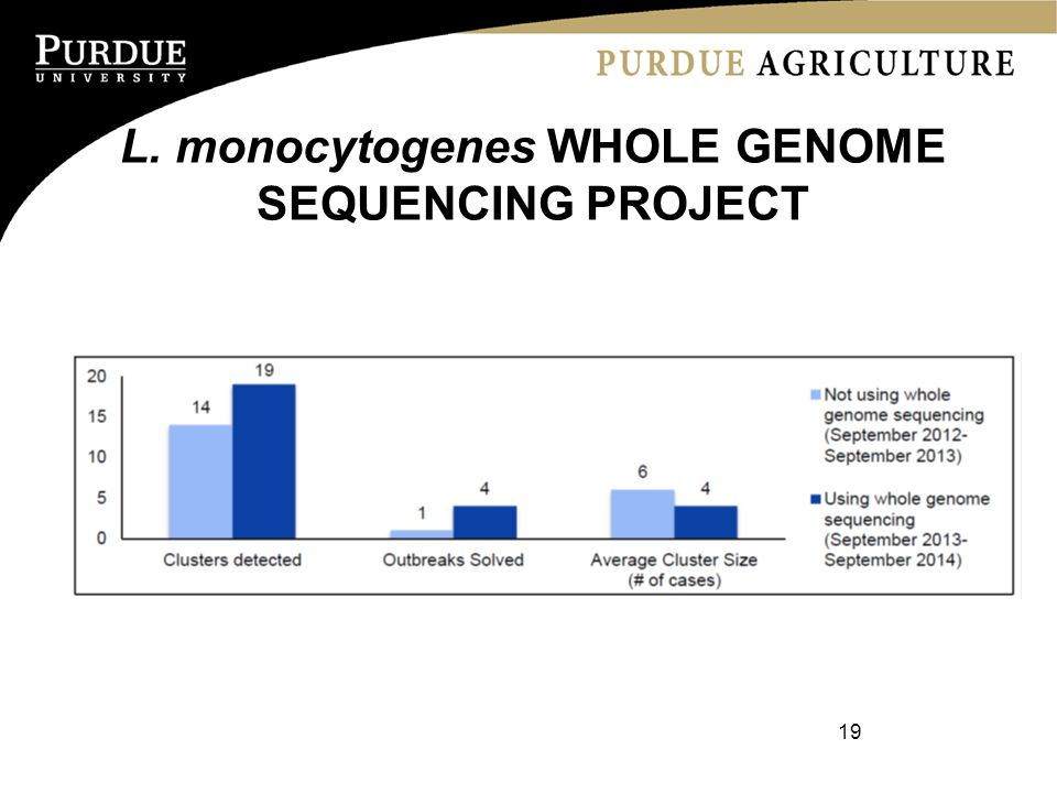 L. monocytogenes WHOLE GENOME SEQUENCING PROJECT 19