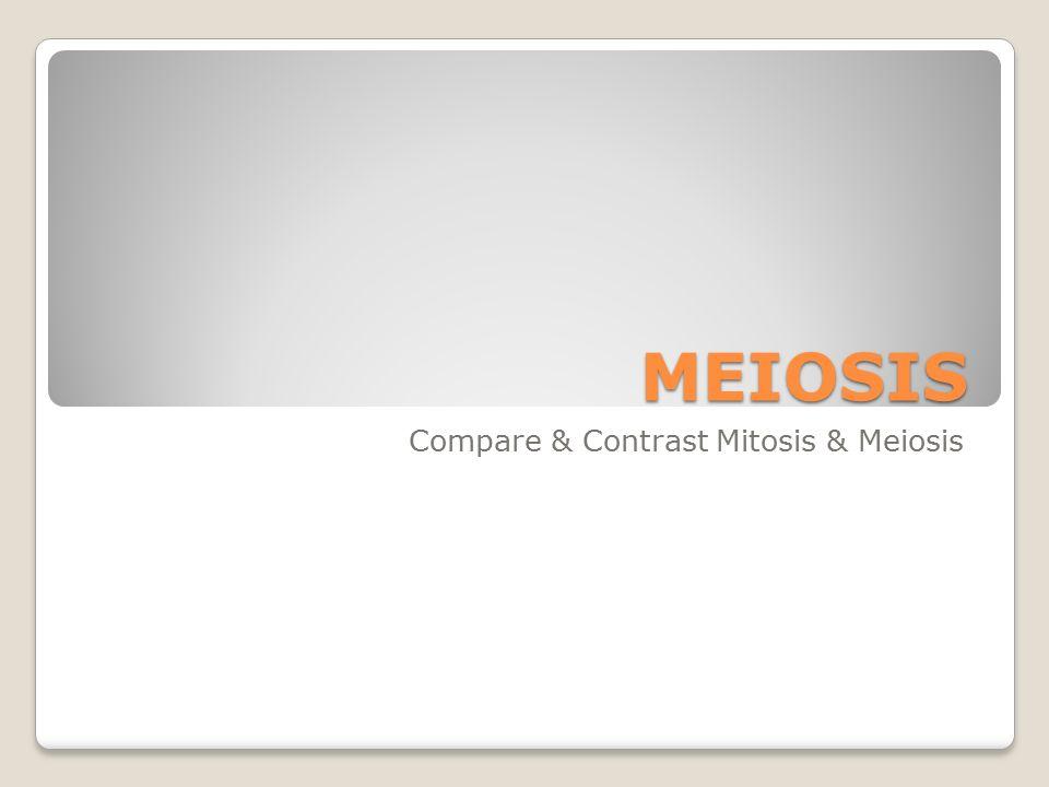 Meiosis Compare Contrast Mitosis Meiosis Journal Week 19 Mon 1