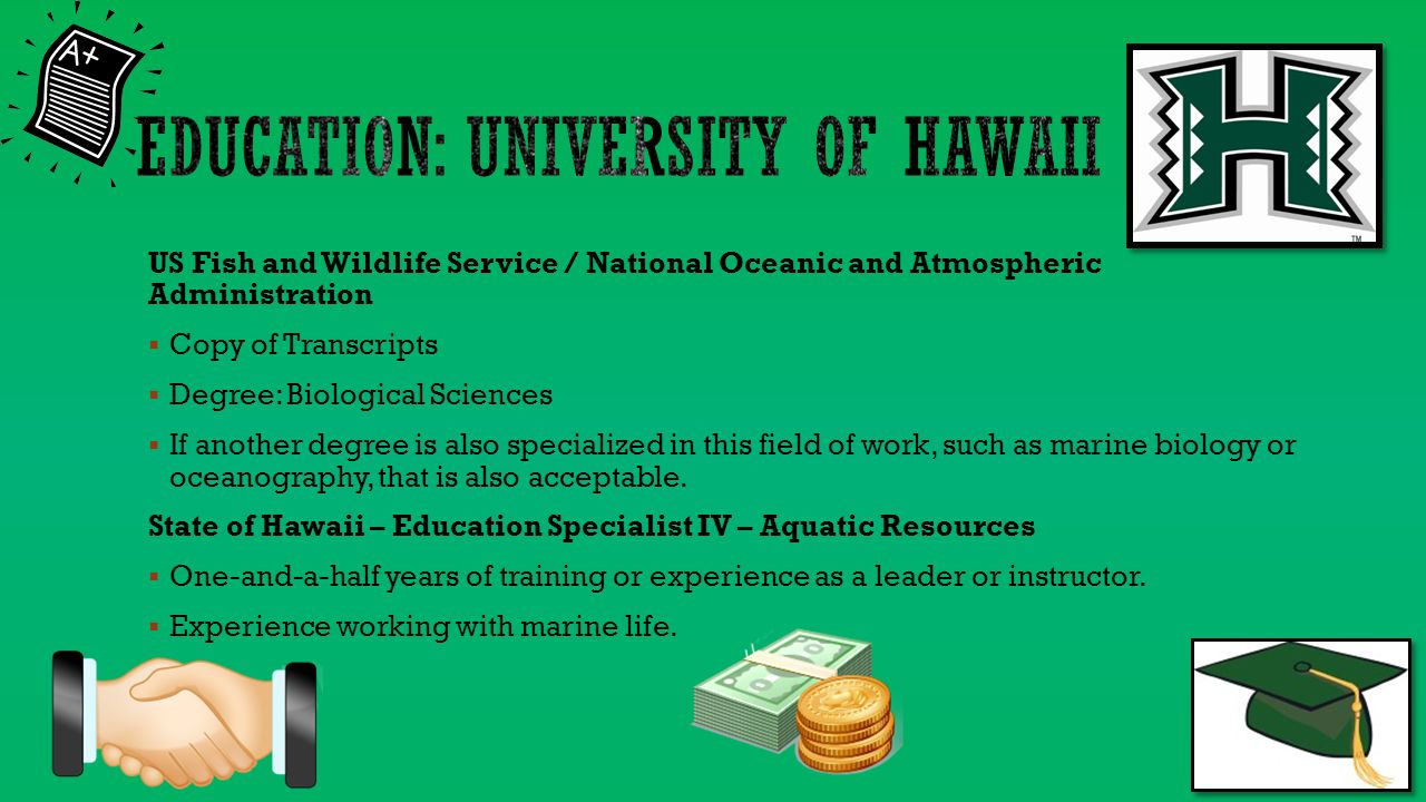 Student English 8h P 4 Whitehurst May 6 U S Fish And Wildlife Service Salary 55 686 503 National Oceanic And Atmospheric Administration Ppt Download