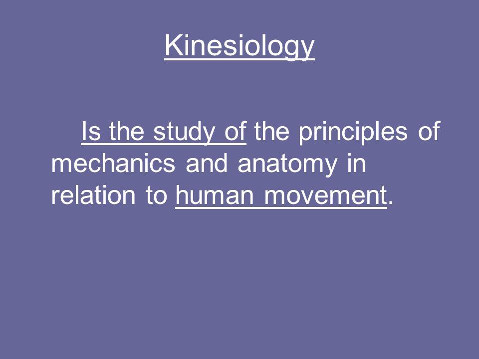 The Holistic Dancer. I Can: 1.Define Kinesiology & Anatomy. 2 ...